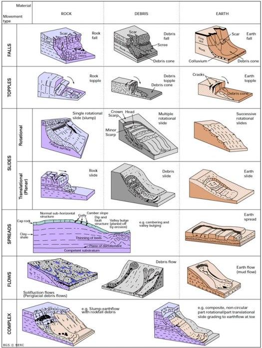 ls classification